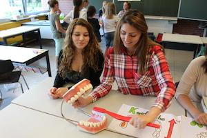 Zahnfeen an der Grundschule